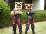 Razor and T-Bone, Swat Kats