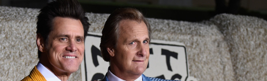 Jeff Daniels at 'Dumb and Dumber To' Premiere: On Board for Another Sequel
