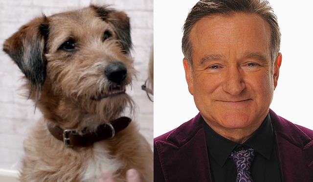 Watch Robin Williams' Final Role In 'Absolutely Anything' Clip