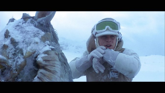 Luke Skywalker and His Tauntaun
