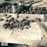 walking-dead-nuts